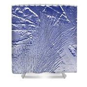 Fir In Blue Shower Curtain