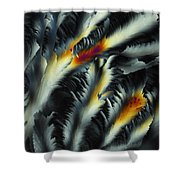 Fire And Frost Shower Curtain