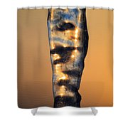 Fire And Ice 8 Shower Curtain