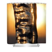 Fire And Ice 9 Shower Curtain