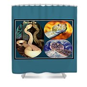 Fire And Ice Slither Collage Shower Curtain