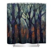 Fire At Sunset Shower Curtain