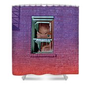 Fire Escape Window 2 Shower Curtain