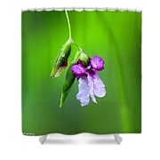 Fire Flag - Alligator Flag Shower Curtain