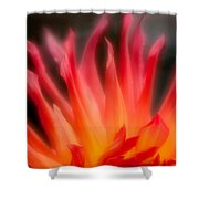 Fire Flower Shower Curtain