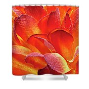 Fire Flower Shower Curtain