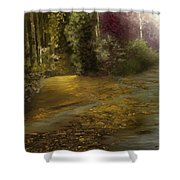 Fire Fly Trail Shower Curtain