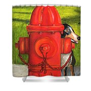 Fire Hydrant Dog Shower Curtain
