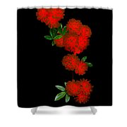 Fire In Bloom 1.1 Shower Curtain