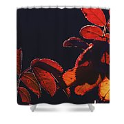 Fire In Hands  Shower Curtain