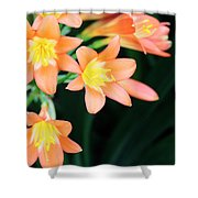 Fire Lily 2 Shower Curtain