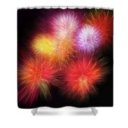 Fire Mums Floral - Fireworks Collage Shower Curtain