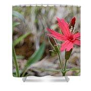 Fire Pink Shower Curtain