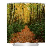 Fire Road Up Mount Minsi Shower Curtain