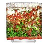 Fire Thorn - Pyracantha Shower Curtain