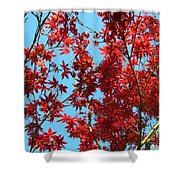Fire Tree II Shower Curtain