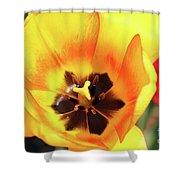 Fire Tulip Shower Curtain
