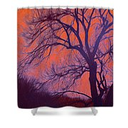 Fire Willow Shower Curtain