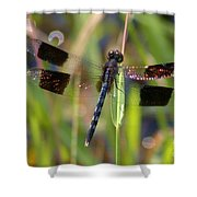 Fire Wing Dragon Shower Curtain