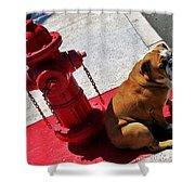 Fireplug Bulldog Shower Curtain