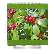 Firethorn Tree Shower Curtain