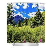 Fireweed, Deer Park Creek, Grand Turk Mountain Shower Curtain
