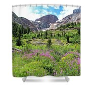 Fireweed Frenzy Shower Curtain