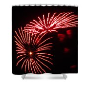 Firework Gerbera Daisies Shower Curtain