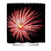 Firework Spider Mum Shower Curtain