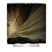 Fireworks Display Shower Curtain