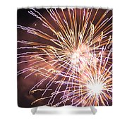 Fireworks In The Park 3 Shower Curtain