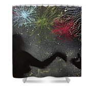 Fireworks Proposal Shower Curtain