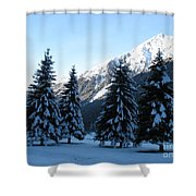 Firs In The Snow Shower Curtain