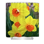 First Arrivals Of Spring Shower Curtain