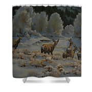First Cold Snap Shower Curtain