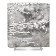 First Day Of Spring 2015 New Jersey Shower Curtain