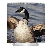 First Day Of Spring Goose Shower Curtain
