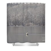 First Day Of Spring Swan Lake Shower Curtain