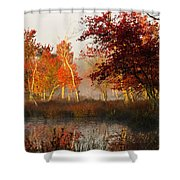 First Light At The Pine Barrens Shower Curtain