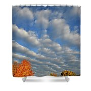 First Light On Glacial Park Sugar Maples Shower Curtain