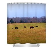 First Nibbles Of Grass Shower Curtain