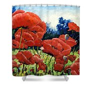 First Of Poppies Shower Curtain
