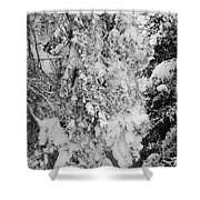 First Snowfall Shower Curtain