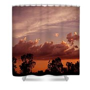 First Wave Shower Curtain