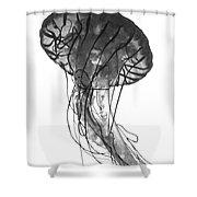 Fish 27 Shower Curtain