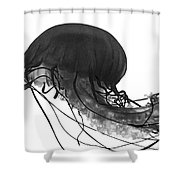 Fish 29 Shower Curtain