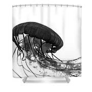 Fish 30 Shower Curtain