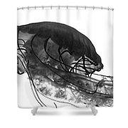 Fish 31 Shower Curtain