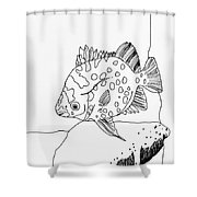 Fish And Rock Shower Curtain