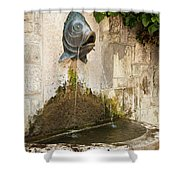 Fish Fountain Shower Curtain